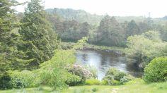 vertraeumtes Irland - B & B - Gaestezimmer -  moira.eccuill@gmail.com Irish Cottage, Connemara, River, Outdoor, Ireland, The Great Outdoors, Rivers, Outdoors