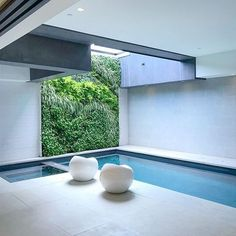 I wouldnt mind an indoor pool in my private studio spa with a vertical garden open above to my outdoor lap and infinity pool. 20mil gets you a lot of cool stuff. #onthematket @dwellondesign #dodla18 #dhla2018 #designhounds #marcheetaresidence