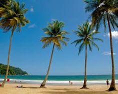 trinidad and tobago - Google Search