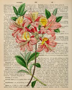 free-printable-dictionary-art-print on http://callmevictorian.com/731/free-printable-dictionary-art-print/#