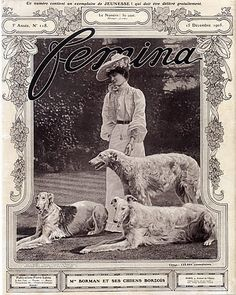 Mrs Borman 1905 Borzoïs, Sighthound, Greyhound Dogs