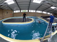 Exclusive look inside Michael Owen's Manor House Stables [VIDEO/PICS] - Horse & Hound