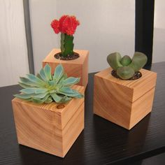 Little planters...love this idea...they remind me of the block from Mr. Magorium's Wonder Imporium