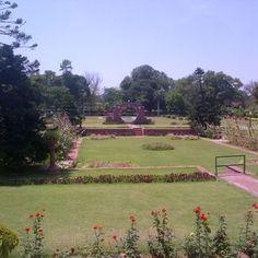 Lawrence Garden
