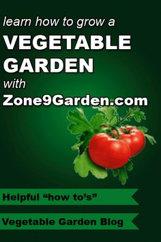 Zone 9 Planting Schedule - MINE! Southern California. I like how it Zone Vegetable Garden Design on vegetable plant container sizes, vegetable garden canada, trees zone 9, plants zone 9, annuals zone 9, planting zone 9, landscape zone 9,