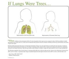 If Lungs Were Trees....best image to justify/explain why preemies often need to be isolated during RSV/Flu season.