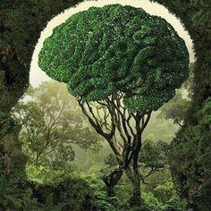 @decorhomium #Brain #GREEN #Creative #Art #decorhomium https://www.decorhomium.com