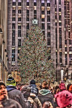 New York 2014-30