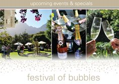 Vineyard Hotel Festival of Bubbles - 2 March Upcoming Events, Cape Town, Vodka Bottle, Vineyard, Alcoholic Drinks, Bubbles, March, Wine, Glass