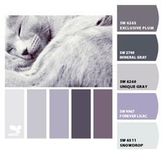 Paint colors from ColorSnap by Sherwin-Williams Paint Color Schemes, Bedroom Color Schemes, Colour Pallete, Lilac Painting, House Painting, Grey Purple Paint, Purple Bedrooms, Sherwin William Paint, Bedroom Wall Colors
