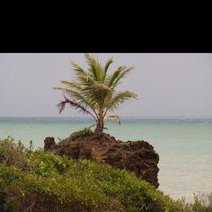 Tambaba beach- Joao Pessoa- Brazil