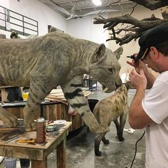 Prehistoric animal models and a goof in a red shirt for scale. Animal Sculptures, Lion Sculpture, Prehistoric Animals, Prehistory, Wildlife Art, Fossil, Sculpting, It Is Finished, Horses