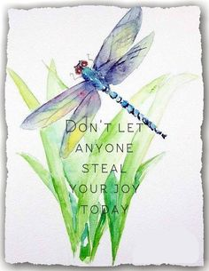 Quotes life wisdom dont let ideas Dragonfly Quotes, Dragonfly Art, Dragonfly Tattoo, Dragonfly Painting, Good Thoughts, Belle Photo, Inspire Me, Watercolor Art, Watercolor Tattoos