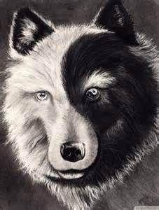 animal yin yang tattoo - Bing Images