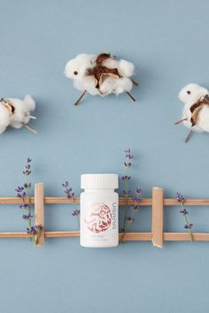 There's no need to count sheep when you have Pure Rest on your side! This fast-acting, ultra-pure supplement is both effective and non-habit forming as it uses melatonin to naturally regulate your sleep and wake cycles. Usana Vitamins, Proper Nutrition, Food Nutrition, True Health, Sleep Help, Counting Sheep, Healthy Sleep, Natural Supplements, Nutritional Supplements