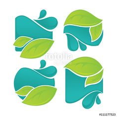 Vector: vector collection of fresh green leaves and water drops signs an