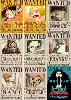 One Piece Anime, One Piece Gif, One Piece Figure, One Piece Crew, One Piece Drawing, Zoro One Piece, One Piece Comic, One Piece Bounties, One Piece New World
