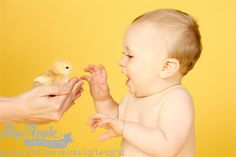 Don't squeeze the baby chicken. Easter Photography Ideas