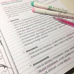 """maysstudies: """" been so swamped with work lately so here are some bio notes I've just written up neat """" handwriting Handwriting Examples, Perfect Handwriting, Improve Your Handwriting, Handwriting Styles, Handwriting Fonts, Handwriting Practice, College Notes, School Notes, School Organization Notes"""