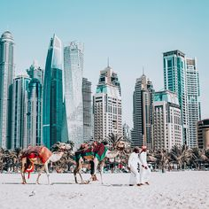 Aap bhi apne picsart me is trh photo ko Bokeh effect editing kar s. In Dubai, Bokeh Background, Picsart Background, Dubai Events, Picsart Tutorial, Hd Background Download, Bokeh Effect, Bokeh Photography, Anything Is Possible