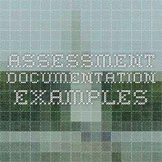 Assessment Documentation Examples