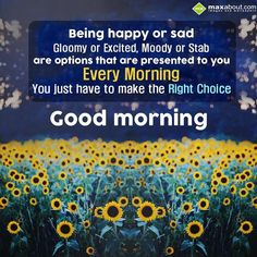 Being happy or sad, gloomy or excited, moody or stab are options that are presented to you every morning. You just have to make the right choice. Good Morning!!