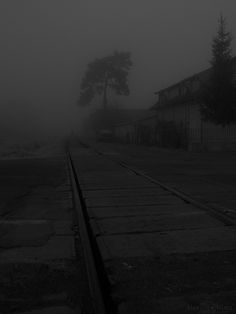 Orasul-invaluit-in-ceata-14.jpg (750×1000)