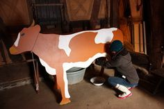 Kostengünstiger Herbsturlaub mit der FreizeitCARD Cow, Hiking, Cattle