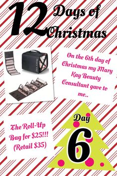 On the 9th Day of Christmas, my Mary Kay Consultant gave ...
