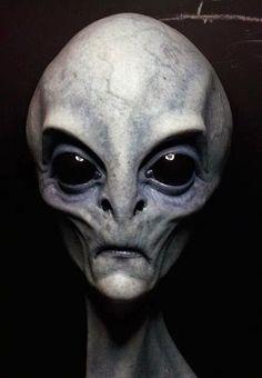 Excursionistas en un bosque de Bulgaria fotografían una estraña figura Humanoide, que relacionan con un Extraterrestre o Alien.