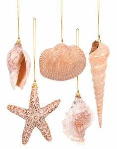 ornaments | Coastal Christmas and Seashell Tree Ornaments | OceanStyles.com