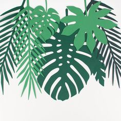 For a tropical birthday or a jungle party, we'll put the emphasis on tropical deco! We install tropical decorative sheets on the walls and hang them from the ceiling. Ideal for a Vaiana birthday! Baby Shower Themes Unisex, Baby Shower Decorations For Boys, Deco Jungle, Baby Shower Table Centerpieces, Valentines Day Baby, Decorative Leaves, Happy Party, Animal Crackers, Tropical Party
