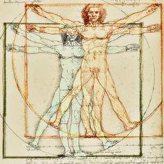 Welches ist das größte menschliche Organ? Haut Die Haut - Unser größtes Sinnesorgan. Mit einer Fläche von eineinhalb bis zwei Quadratmetern ist die Haut das größte Sinnesorgan des menschlichen Körpers. Sie macht rund ein Sechstel des Körpergewichtes aus.