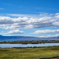 Stunning colors in El Calafate. Can you see the flamingos?