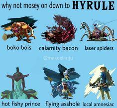 why not mosey on down to Hyrule Legend Of Zelda Memes, Legend Of Zelda Breath, The Legend Of Zelda, Botw Zelda, Pokemon, Hyrule Warriors, Gamers, Link Zelda, Twilight Princess