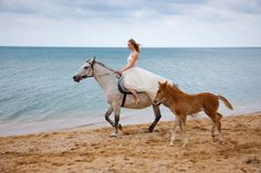 Inspiration for your beach wedding