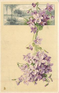 purple flowers below & over rectangular inset of rural scene - TuckDB Postcards Art Vintage, Vintage Crafts, Vintage Images, Flower Symbol, Sweet Violets, Deco Floral, Decoupage Paper, Vintage Greeting Cards, Vintage Flowers