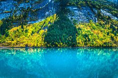 Frying Pan Lake, New Zealand | Golden Larch trees and Kinney Lake in Mt Robson Provincial Park ...