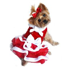 Small White Christmas Santa Girl Dog Dress by Doggie Design Small dress fits a chest and a neck For dogs lbs Harness style with velcro closures D-ring for leash attachment Red chiffon dress with skirt and white fur trim Dog Christmas Clothes, Christmas Dog, White Christmas, Christmas Costumes, Costume Halloween, Christmas Shopping, Merry Christmas, Christmas Gifts, Yorkshire Terriers