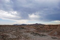 Ricardo Campground // Red Rock Canyon State Park