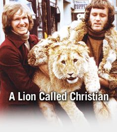 Lion Called Christian, A | About A Lion Called Christian
