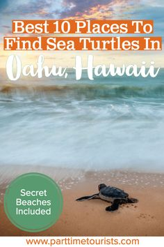 New Snap Shots Oahu Hawaii beaches Thoughts See Hawaii is essentially the most favorite getaway destinations on the earth, as well as should you get to ch. Oahu Hawaii, Hawaii Travel, Hawaii Vacation, Beach Travel, Croatia Travel, Thailand Travel, Bangkok Thailand, Italy Travel, Turtle Beach