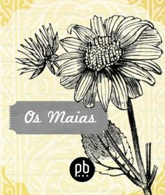 Os Maias - revised and illustrated (Portuguese Edition) by Eça de Queirós. $0.99