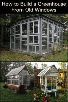 Old Window Greenhouse, Diy Greenhouse Plans, Backyard Greenhouse, Backyard Landscaping, Backyard Ideas, Homemade Greenhouse, Small Greenhouse, Bird Bath Garden, Garden Art