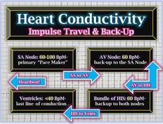 The back-up system to electrical conductivity enables the nurse to understand the principles that underlie an abnormal EKG reading.