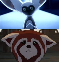 lets just face it. Momo, and pabu are the best characters in the whole avatar the last airbender/legend of korra universe