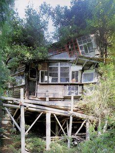 Unique Tree House With Windows