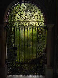 Portal Gate, The Enchanted Wood photo via olivia Doors visible in dreams alone. Lush, soft, to get lost--to be found. Gazebos, Wrought Iron Gates, Iron Work, My Secret Garden, Secret Gardens, Hidden Garden, Enchanted Wood, Enchanted Garden, Door Knockers