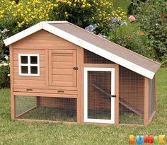 online shopping for Balto Cape Cod Chicken Coop Chicken Run, Nesting Box Roosting Bar Tucker Murphy Pet from top store. See new offer for Balto Cape Cod Chicken Coop Chicken Run, Nesting Box Roosting Bar Tucker Murphy Pet Chicken Barn, Diy Chicken Coop Plans, Portable Chicken Coop, Best Chicken Coop, Backyard Chicken Coops, Building A Chicken Coop, Chicken Runs, Chickens Backyard, Backyard Coop