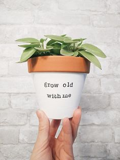 Succulent Planter - HOW CUTE IS THIS?! Grow Old With Me What a nice way to say I love you!